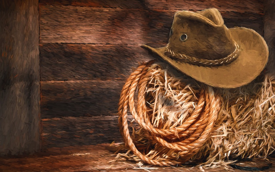Looking At ISO 27001 Certification? Guidance On How To Avoid The Cowboys